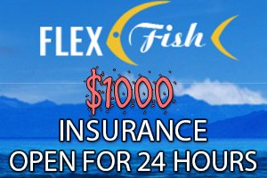 Image for FLEX FISH LTD Insurance open till 24 HOURS.