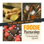 #FoodiePharmacology has a fabulous lineup this Fall! Join me as I chat with award-winning authors, scientists & #chefs about the history of #food, #botany, indigenous knowledge & foodways!  New episodes every Monday!   ICYMI: Catch up on old episodes here: https://t.co/JK6m6rwIHq