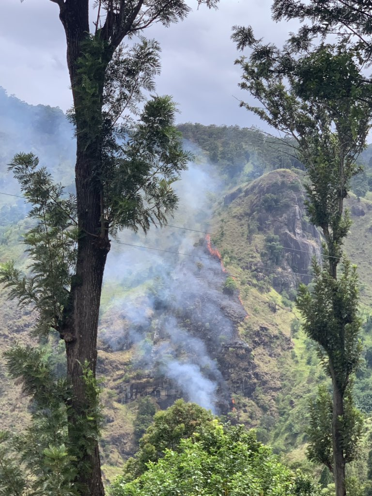 Fire spotted in Ella Rock National Reserve. Spreading fast. Villagers said it's been hours since authorities were informed but no action yet. Cause unknown. However in 2018 #srilanka was the 2nd most affected country by #climatechange. We need to do better in disaster response.