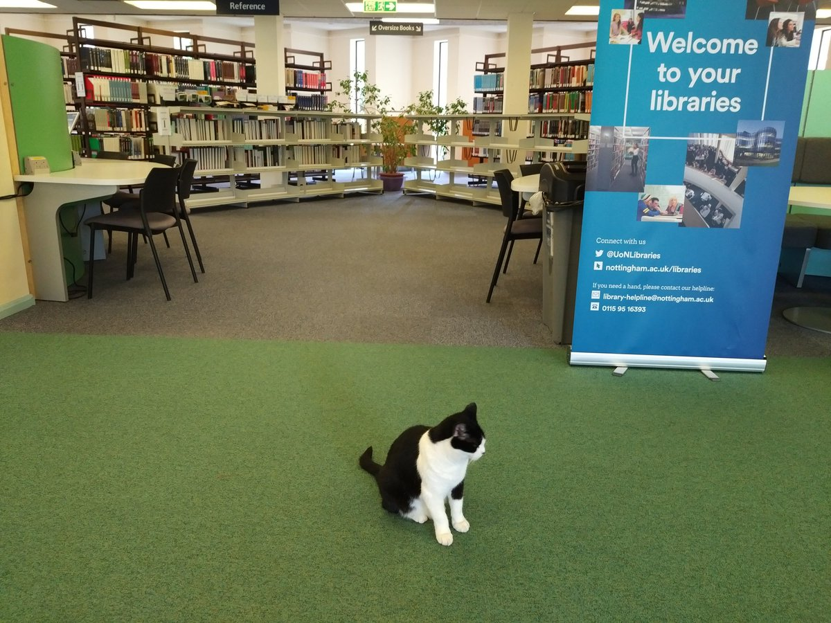 Dunno about #dogsatpollingstations but here at @UniofNottingham we seem to have #catsinlibraries ...