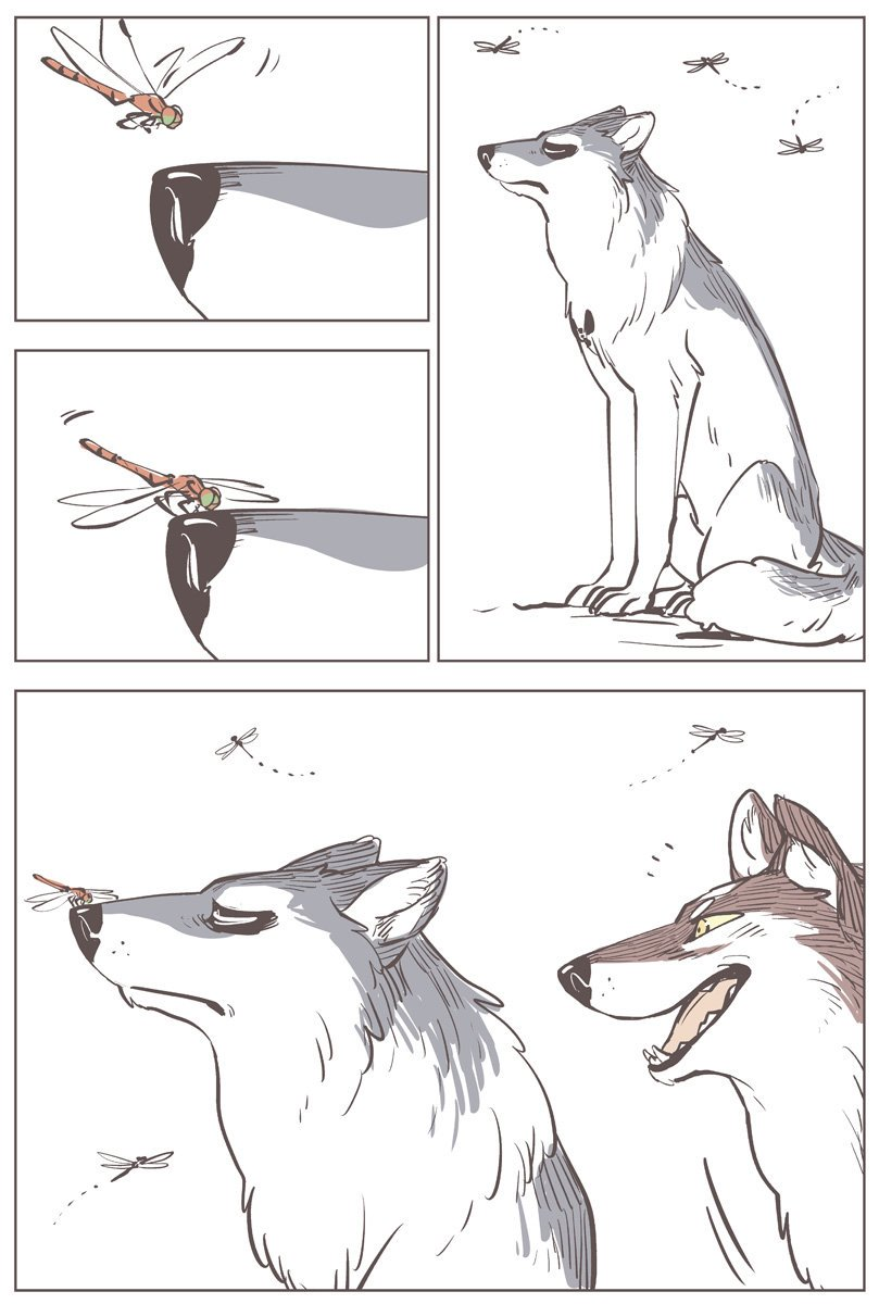 トンボに止まってほしい狼#こりせんまん