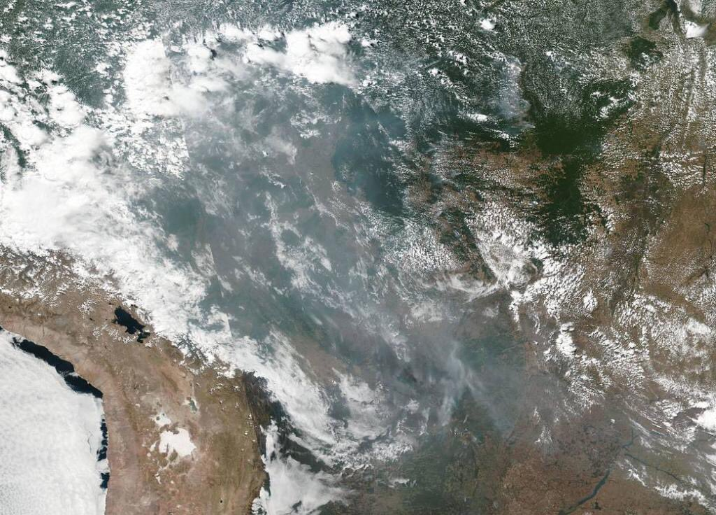 #AmazonRainforest fires seen from space 🛰 The smoke has spread across several Brazilian states,this @NASA image shows Fires release pollutants including particulate matter & toxic gases such as carbon monoxide,nitrogen oxides &non-methane organic compounds into the atmosphere