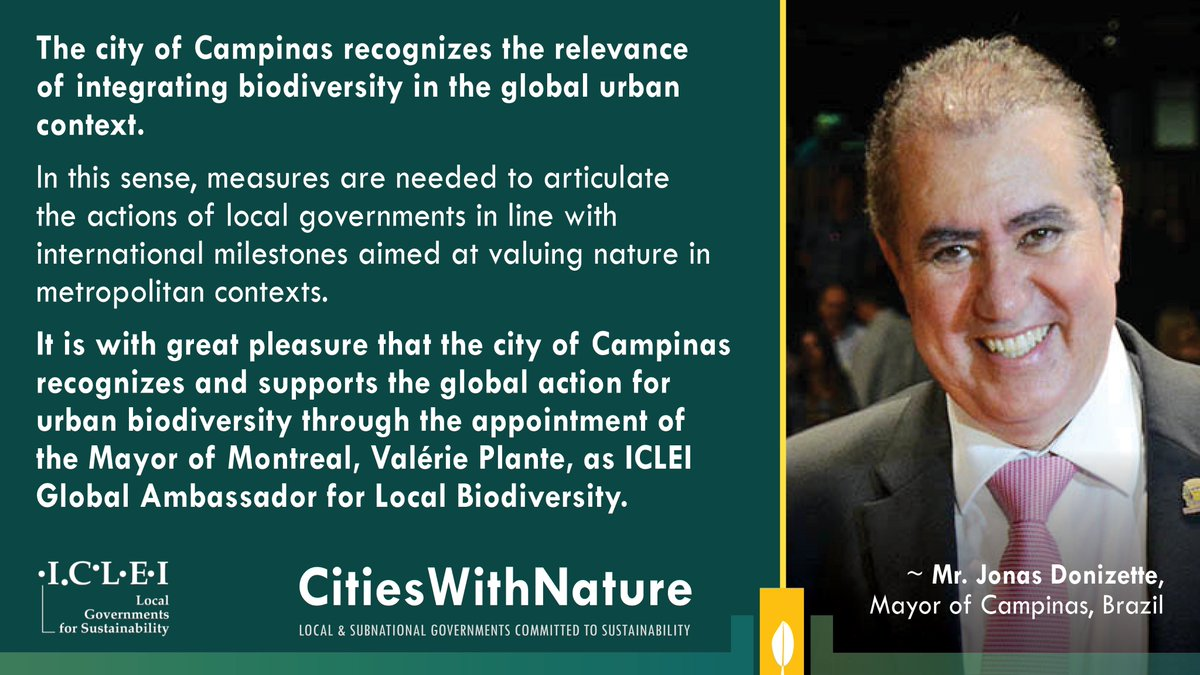 ICYMI: #MontrealLeadsLocalAction for #Nature, Mayor @Val_Plante has been honoured as ICLEI's Global Ambassador for Local Biodiversity.  Message of support from Mr. Jonas Donizette, Mayor of Campinas, #CitiesWithNature pioneer & longstanding @ICLEI member.  https://t.co/kiB63Q93Qp