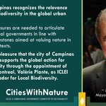 Image for the Tweet beginning: ICYMI: #MontrealLeadsLocalAction for #Nature, Mayor