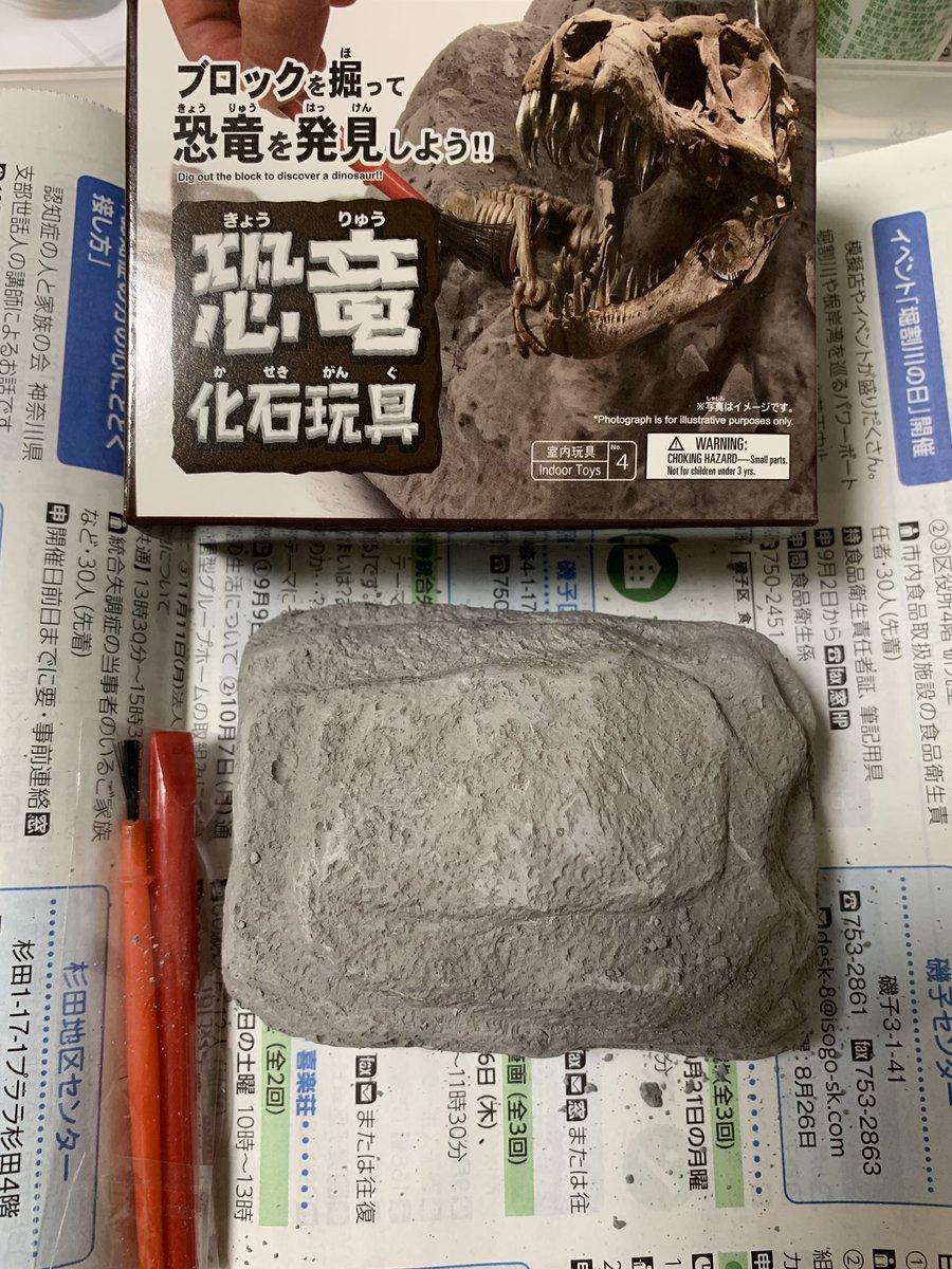 test ツイッターメディア - 地味に楽しかった☻ #ダイソー #恐竜化石発掘 https://t.co/IgDjkLtf7q