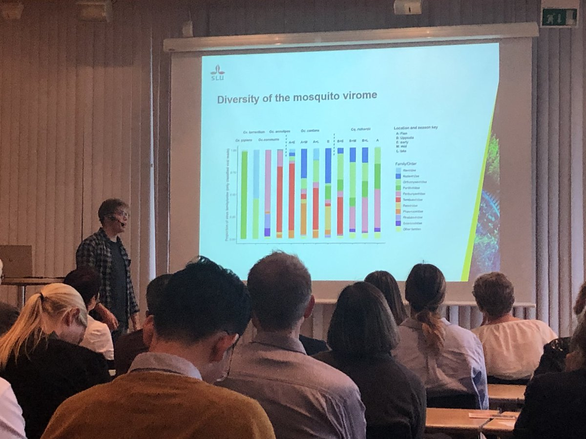 Last @SLU_Virology member to present on this years meeting @Pontus_Ohlund going for colorful data on viruses present in Swedish mosquitoes 🦟 https://t.co/9cNqz7ysjm