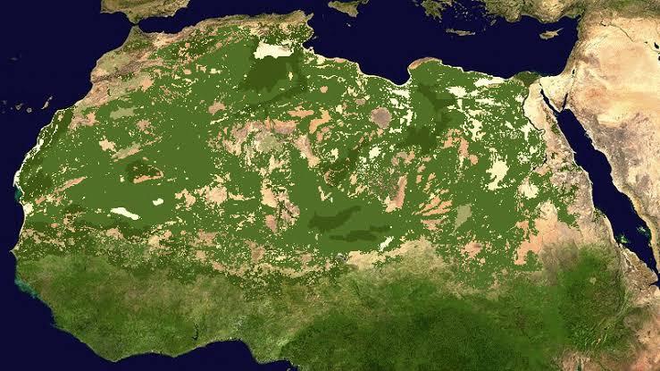 Resultado de imagen para CLIMA EN DESIERTO DEL SAHARA HACE 10,000 AÑOS