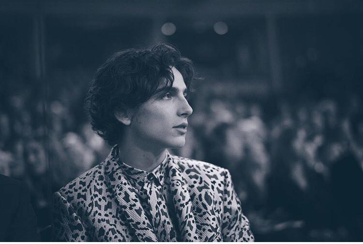 Timothée attending BAFTAs red carpet on February 2019  #TimothéeChalamet #LittleWomen #TheKing #HaiderAckermann @sarahml3347 on ig reposted by @BAFTA on ig <br>http://pic.twitter.com/1HTwnooXd2