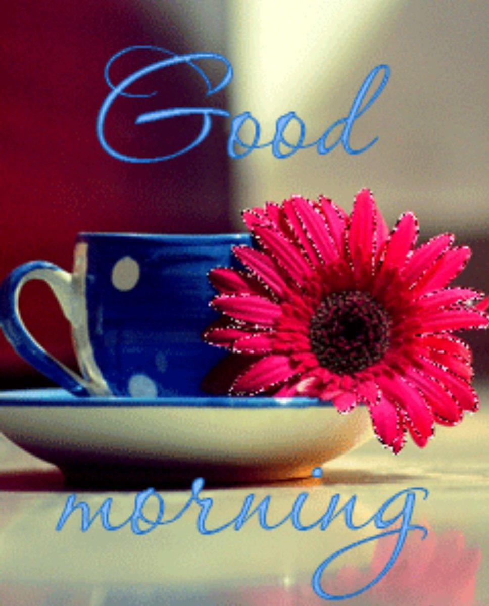 Доброе утро марина картинки красивые гиф, картинки