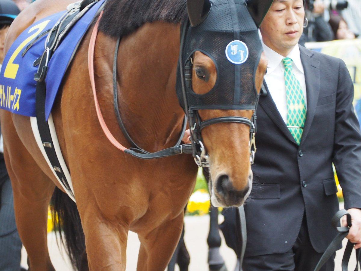 サトノルークスはセントライト記念は川田とのコンビか。どんどん添さんのお手馬がなくなってく。 #サトノルークス #川田将雅 #セントライト記念