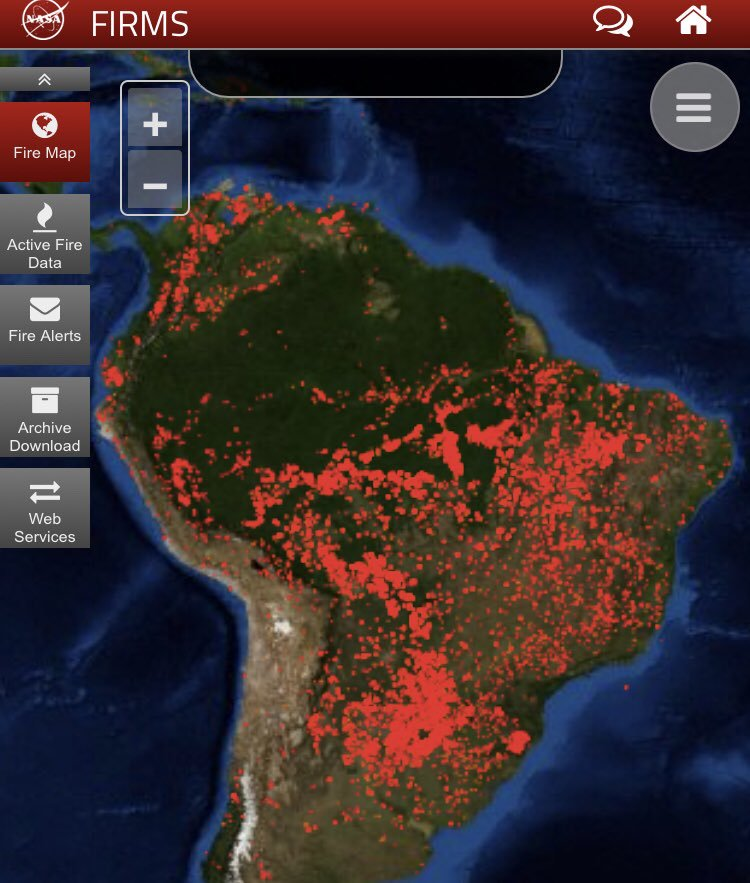 Amazon forest last 24 hour fire map by NASA. #Map #Maps #Terriblemaps #TerribleMap #AmazonFire #AmazonForest #Amazon