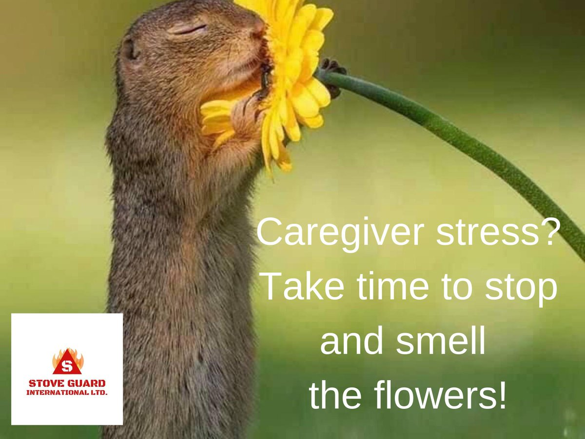 test Twitter Media - #caregivers #stressed #eldercare #caregiving #seniorcare #caregiversupport #dementia #alzheimer #aging #assistedliving #tips https://t.co/nVrDQZpm1s https://t.co/ZNLbPcI5l2