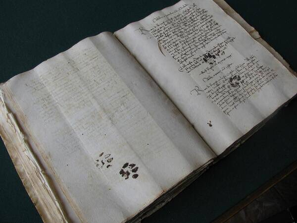 Proof that cats have been walking across people's things since at least the 15th century.