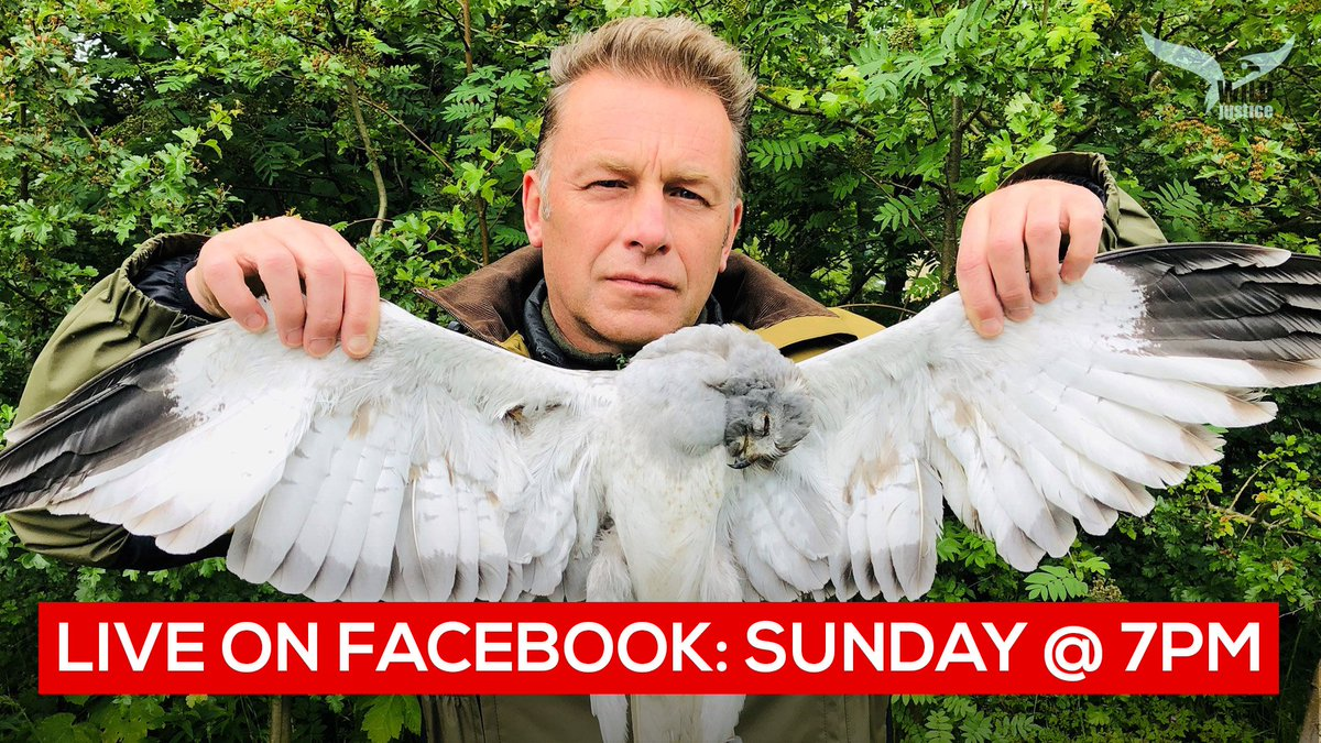 Join me on Sunday at 7pm . Ill be live on Facebook with a Q&A about @WildJustice_org s petition to ban driven grouse shooting . The post is pinned to the top of my page here : facebook.com/ChrisGPackham/ And please sign the petition today : bit.ly/BANdgs