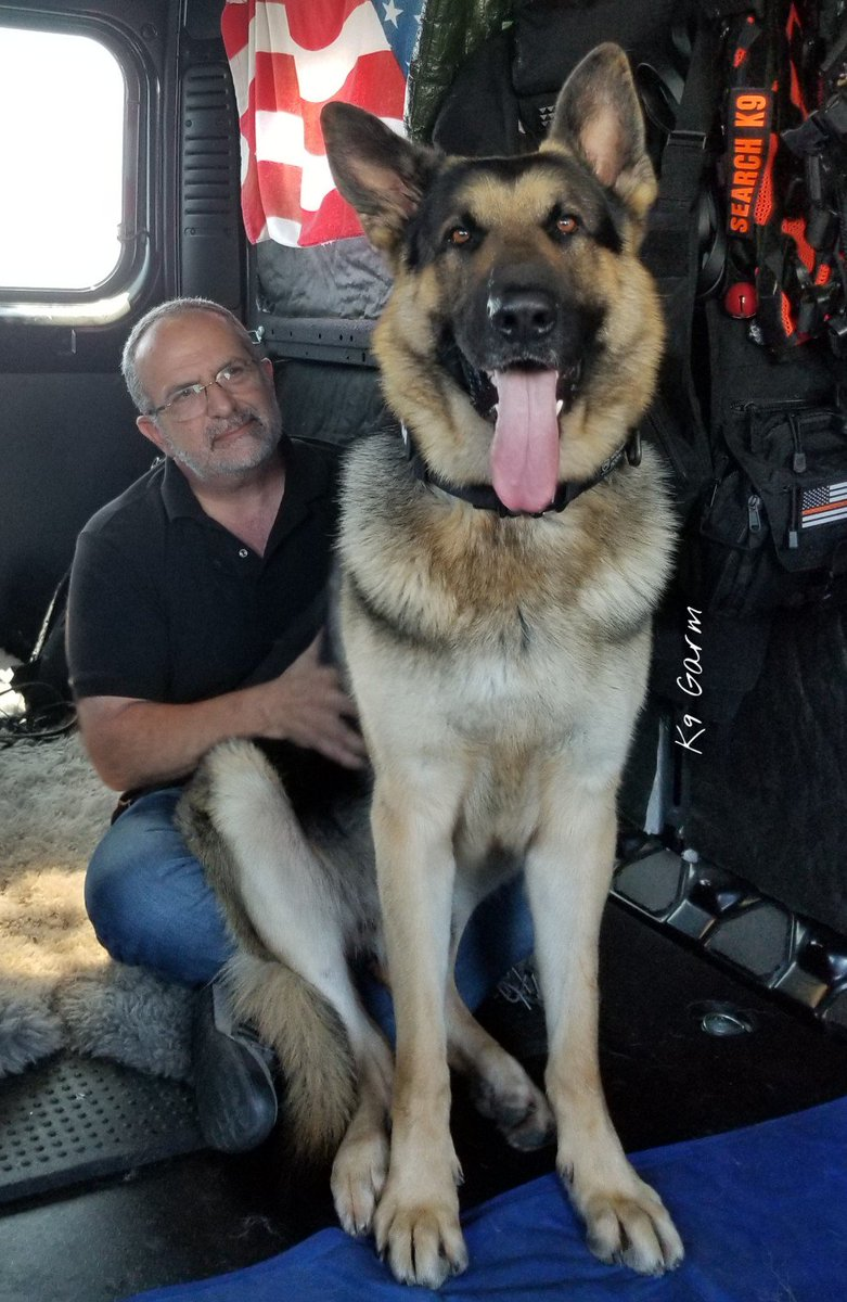 """The #moosedog and his favorite """"uncle""""  one of his favorite ppl. If you sit on the floor, the moose WILL be in your lap 100% #K9Garm #SARK9 #dogsoftwitter #dog #dogs #germanshepherd #gsd #moosedog #FaMoose<br>http://pic.twitter.com/Bx3HYcrnoL"""