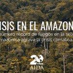 El número récord de fuegos en la selva amazónica agrava la crisis climática https://t.co/jbtyVx1NWS   #AmazonasFire #AmazonasEnLLamas #PrayForTheAmazon #AmazoniaSOS #TodosPorElAmazonas