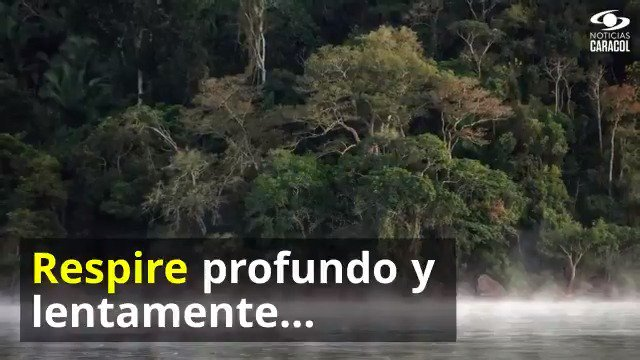 ¿Alguna vez ha sentido que se ahoga? Eso le está pasando hoy a nuestro planeta al quemarse uno de sus pulmones: la Amazonía. Lo invitamos a compartir este video y, desde donde esté, darle un respiro a la Tierra - http://bit.ly/2Zqldd4#AmazonasEnLlamas #PrayForTheAmazon