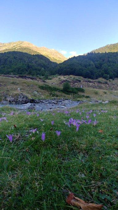 Valle d'ossau está tarde, vertiente norte del Pirineo. Sol y unos 18C° a las 19h a 1300m.