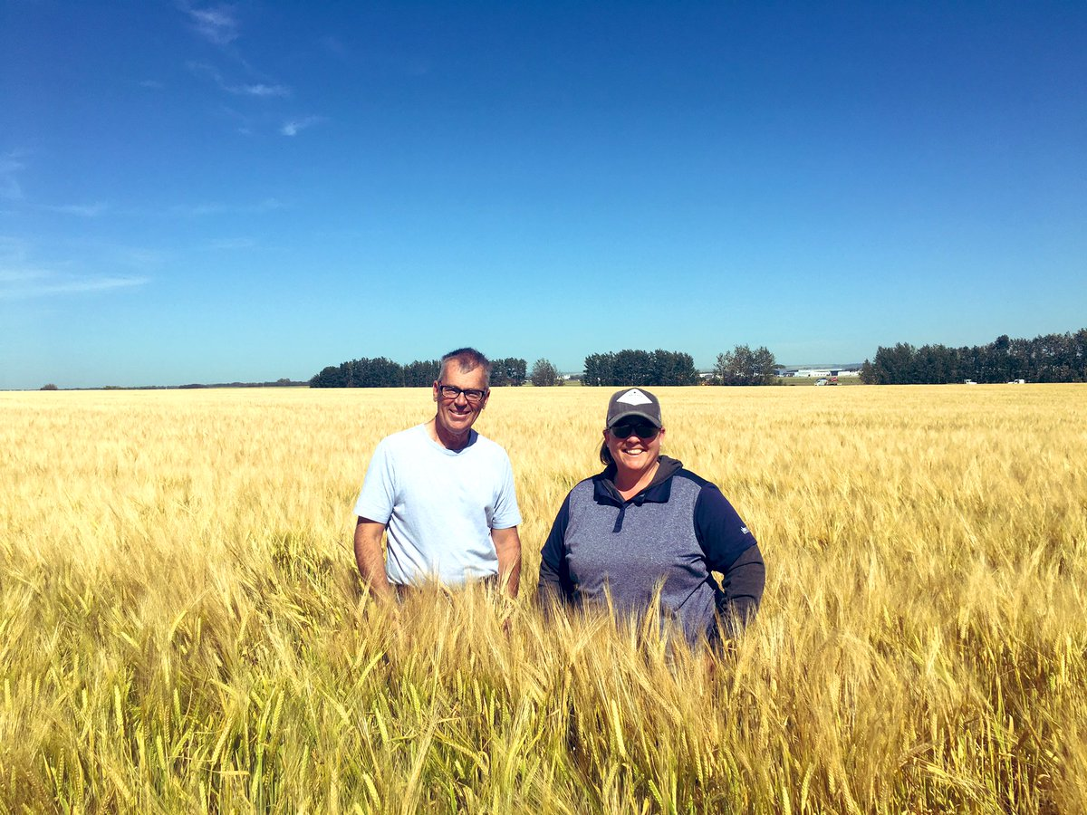Looking at Hamill Farms Connect barley and Connery Wheat fields with @CANTERRAcolette from @canterraseeds #beerfields <br>http://pic.twitter.com/q1jzrxPlvs