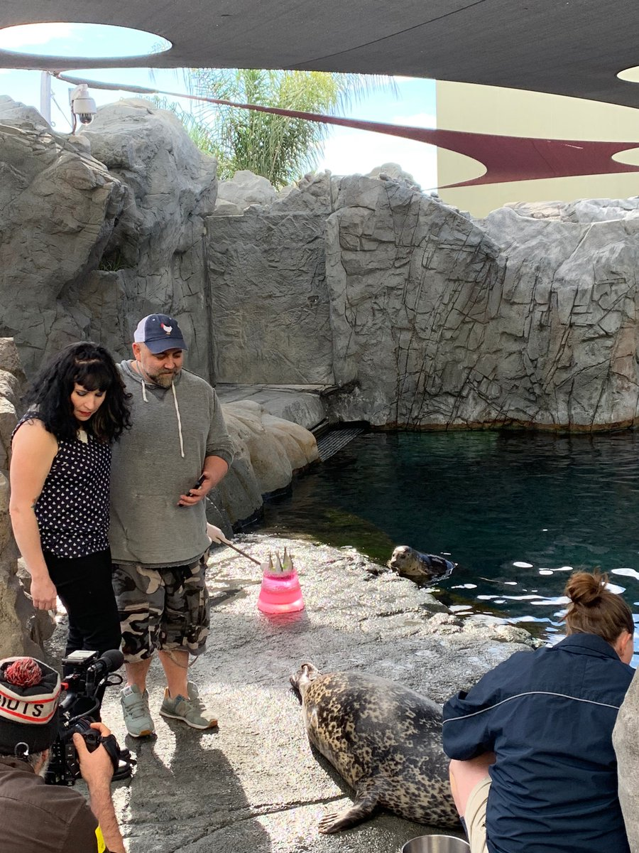 #tbt to feeding the Harbor seals at the Aquarium of the Pacific on #DuffTakestheCake  @FoodNetwork <br>http://pic.twitter.com/7Z9yBGT0M2