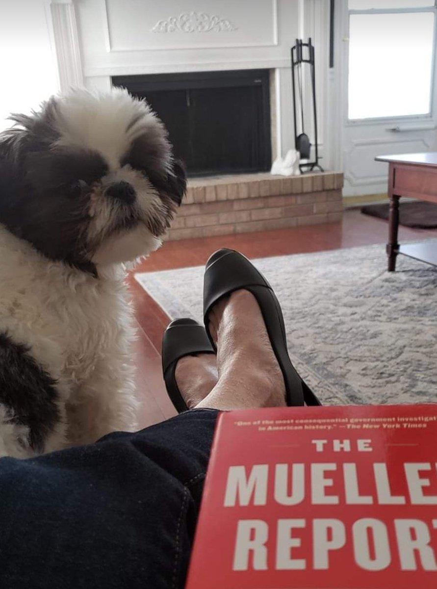Demi the #Democrat.... Just chillin & reading the #MuellerReport <br>http://pic.twitter.com/rYDTWdlZ7Y