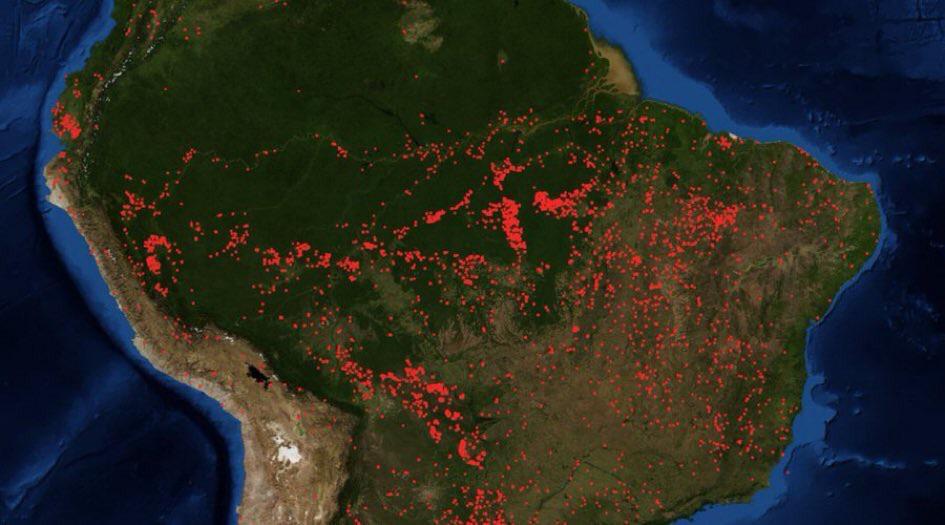 RT @vegandanshi: 言葉が出ない。これは今のアマゾン熱帯雨林。赤いとこは全て火炎。  世界一大きくて、生物が多い森林が牛肉を生産する土地を作るために燃やされてるのになんでテレビに流されない? https://t.co/C98uNwxBNH