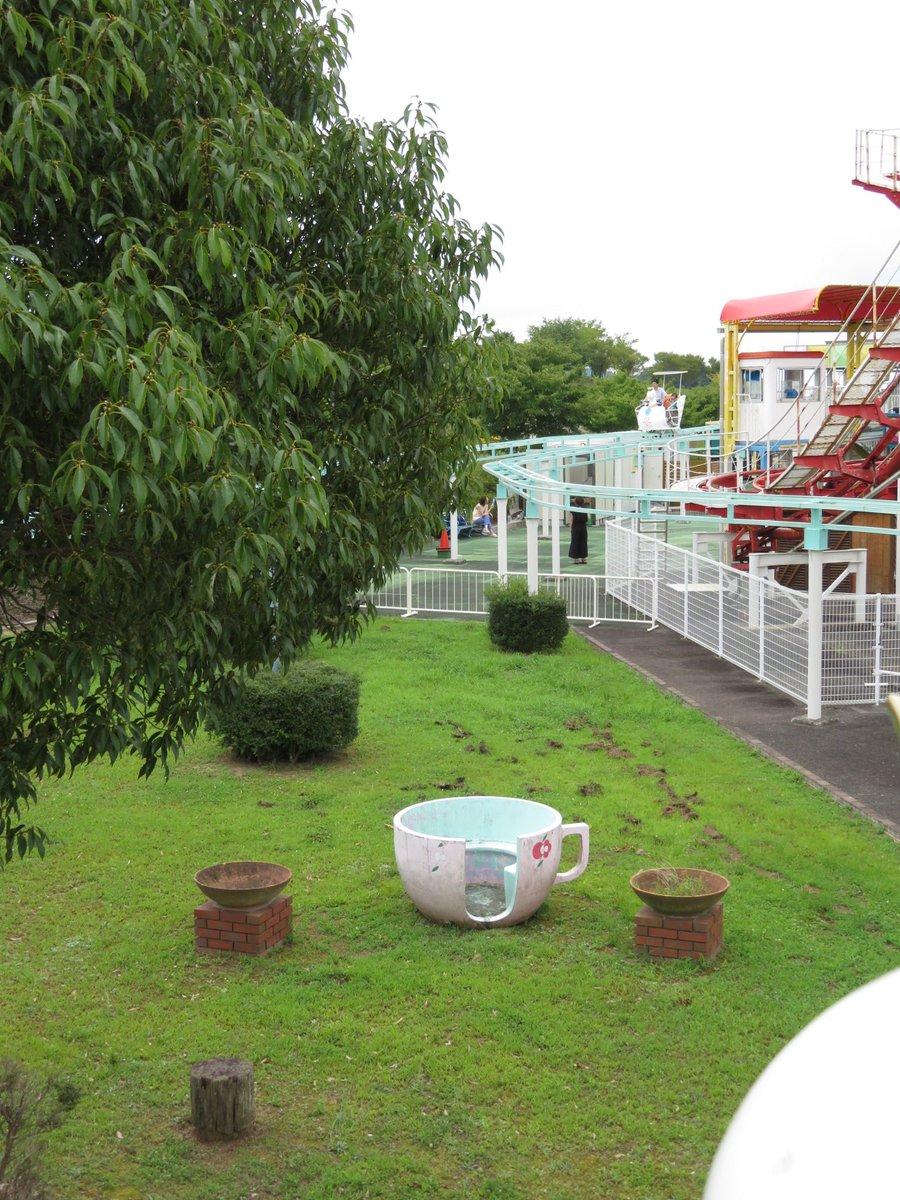 フルーツフラワーパーク遊園地にて コーヒーカップの廃車体か? 通常入れない位置にポツンと捨てられています! 2019.8.22