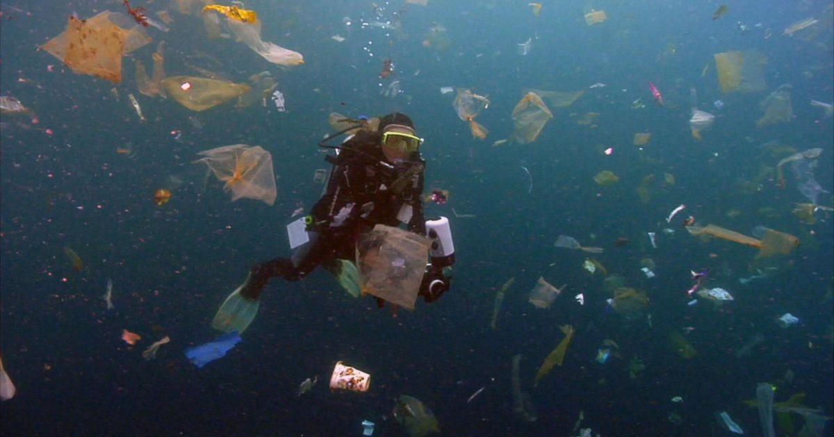 Cleaning up the plastic in the ocean - 60 Minutes https://t.co/AmgcO7BGFf https://t.co/bECowSs1TD