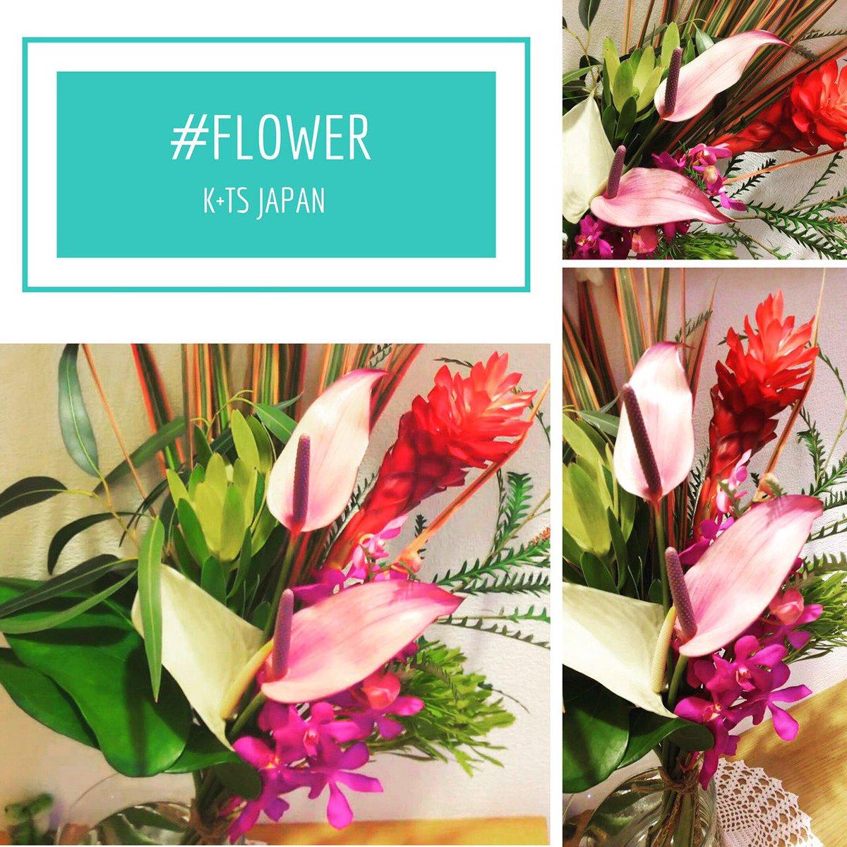 お店の玄関のお花が変わりました! ネイティブフラワーというちょっぴり変わったお花ですので、ご来店の際は是非見てくださいね☆  #ネイティブフラワー #ハワイの花 #花のある暮らし #玄関のお花 #美容室のお花 #flower  #可児市美容室 #可児美容室 #岐阜美容室 #スタッフ募集 #ケーティーズジャパン