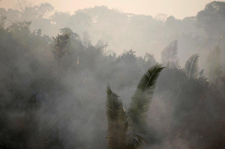 #Amazonie. Que #Bolsonaro soit tenu responsable de ce qu'il faudrait pouvoir nommer, au sens propre, un crime contre l'humain! Celui qui brûle une bibliothèque détruit un peu de la noblesse du monde; celui qui incendie le poumon commun détruit l'oxygène de notre espérance.