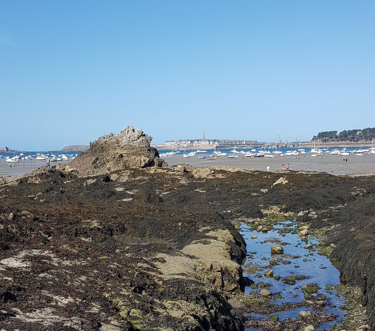 Friday's photograph ! #SaintMalo in #Brittany. #MagnifiqueFrance.<br>http://pic.twitter.com/xDxFhRUUvi