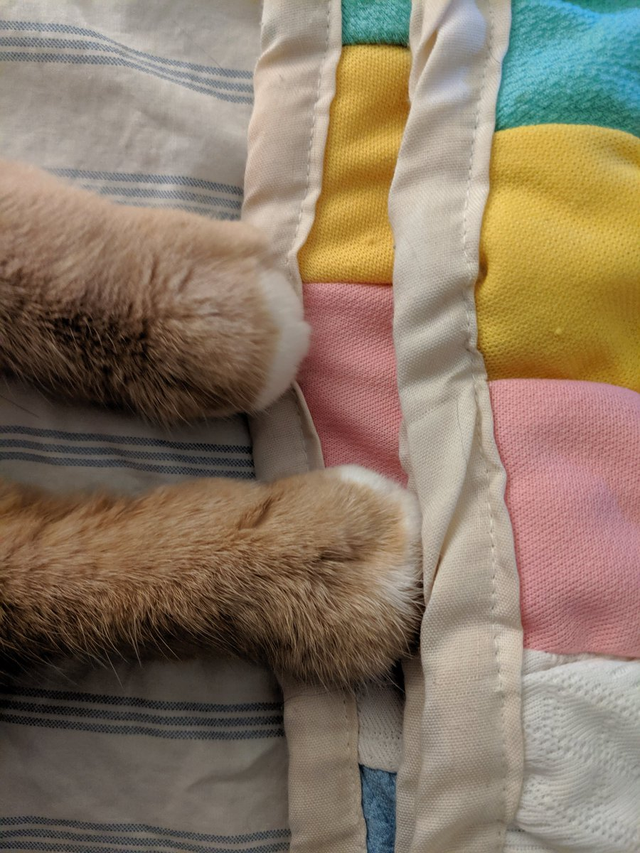 #feetsfriday making blanket biscuits <br>http://pic.twitter.com/ZKjedeoZT1