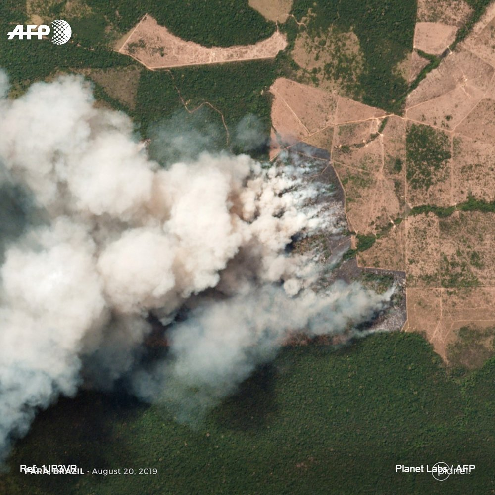 Incendies en Amazonie : lAFP a eu accès à des images satellites exclusives des feux qui ravagent en ce moment le poumon de la planète (1/4) #PrayforAmazonia #PrayforAmazonas #AFP