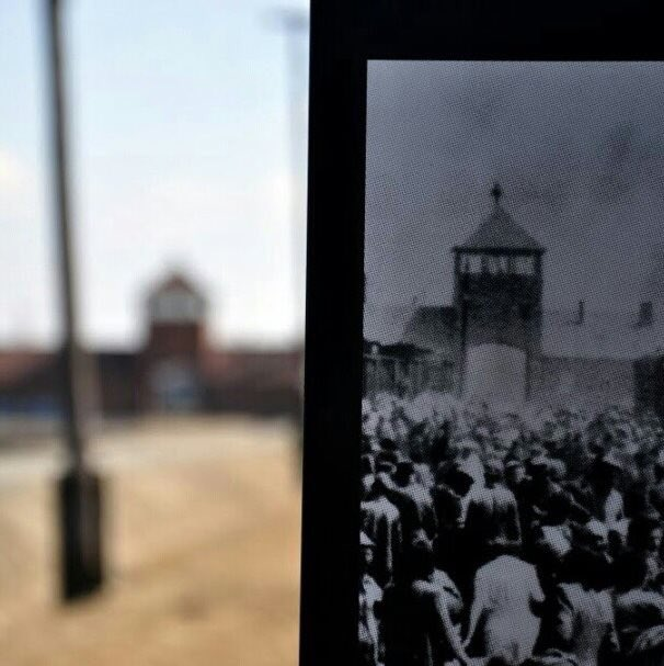 We hope to get 750,000 followers for the 75th anniversary of the liberation of Auschwitz on 27 Jan 2020.This will not be possible without your support & engagement.Help us to honor all victims and preserve their memory online. RT & encourage others to follow @AuschwitzMuseum.