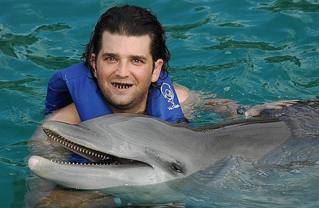 @THEGaryBusey @robdelaney @SeaWorld
