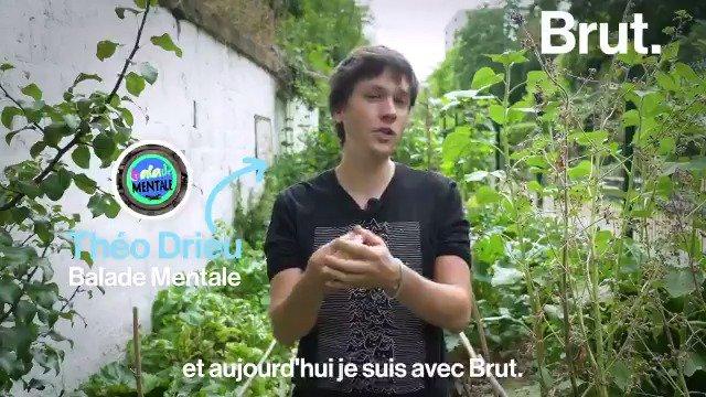 C'est une histoire qui fait polémique depuis plus de 30 ans et qui refait surface chaque année. @BaladeMentale et la documentariste @InesLeraud reviennent sur le phénomène des algues vertes pour Brut.documentaires. 👉 bit.ly/2P7GqVk