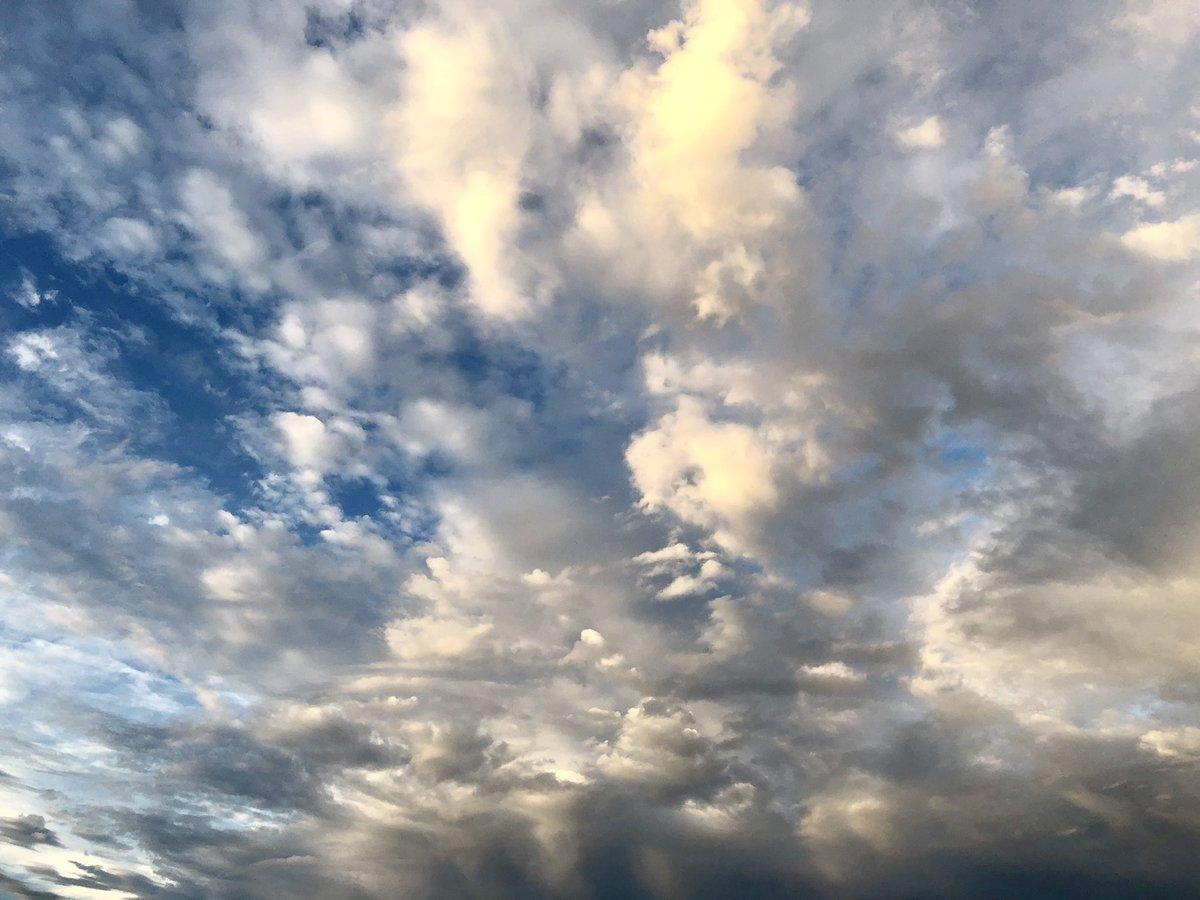 リハーサルの後空がきれいだった。8月25日のSalyuさん、長田進さん、羊毛さんと一緒に。白鳥座ライブ楽しみです!