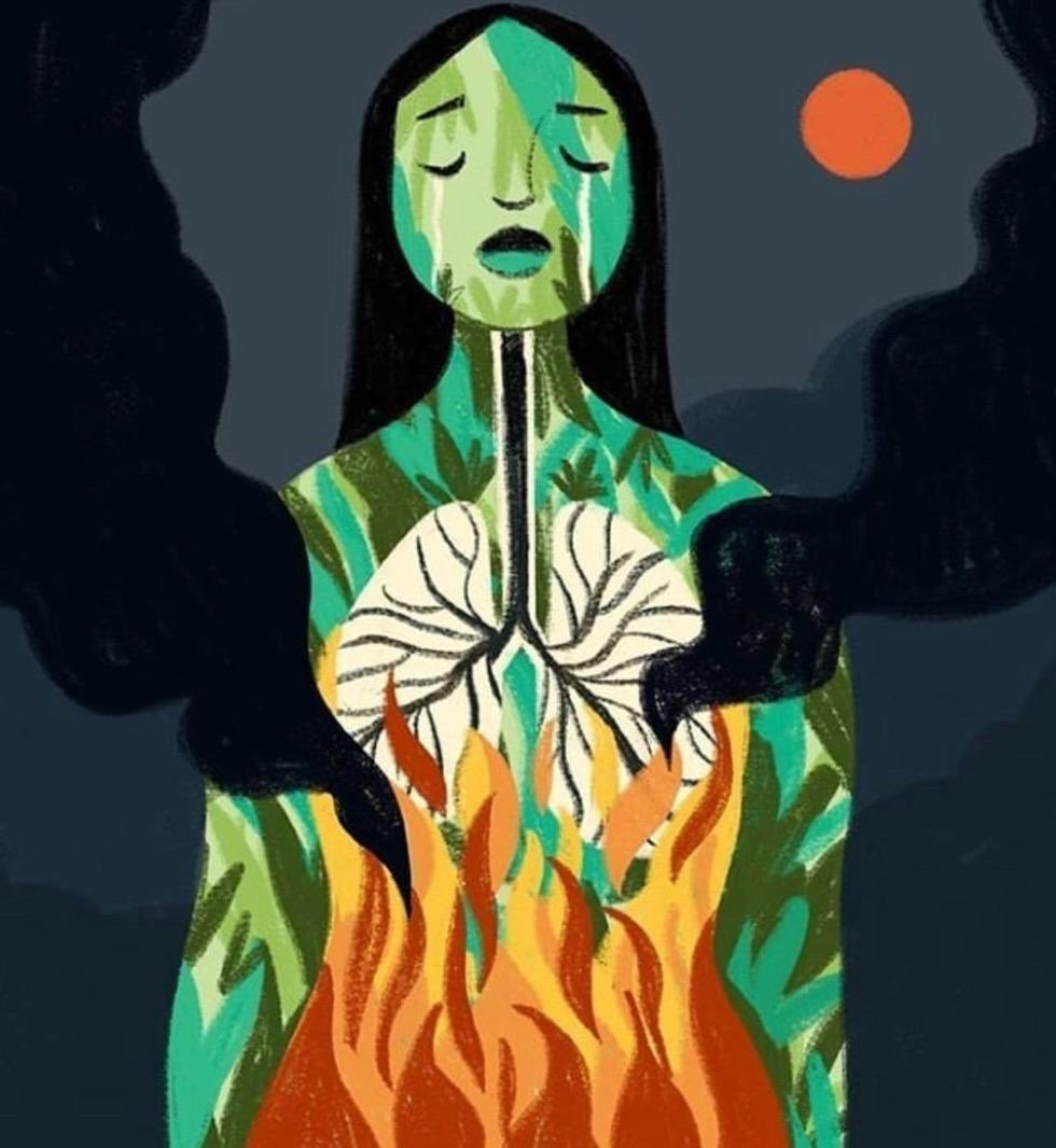 what if all of us wrote at the exact same time about the burning of the #amazonia &provide a wake-up call to not just the world distracted but ourselves before its last breath calling all #writers #poets hand in hand-a voice for all #BraveWrite #tanka #vss365 #ActForAmazonia