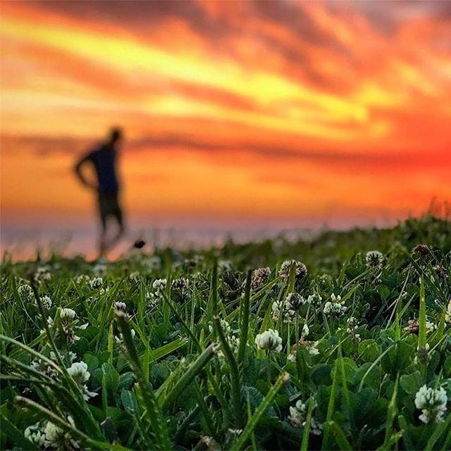 #Uruguay showing off #Sunset #SouthAmerica #HappyFriday 🌅❤️💛⠀.⠀.⠀.⠀.⠀#wanderlust #travel #vacation #travelgram #traveltips #adventureseeker #travelmore #goexplore #instatravel #adventure #tour #travelling #travellife #mountains #tourism #t… https://ift.tt/2KQcrwS