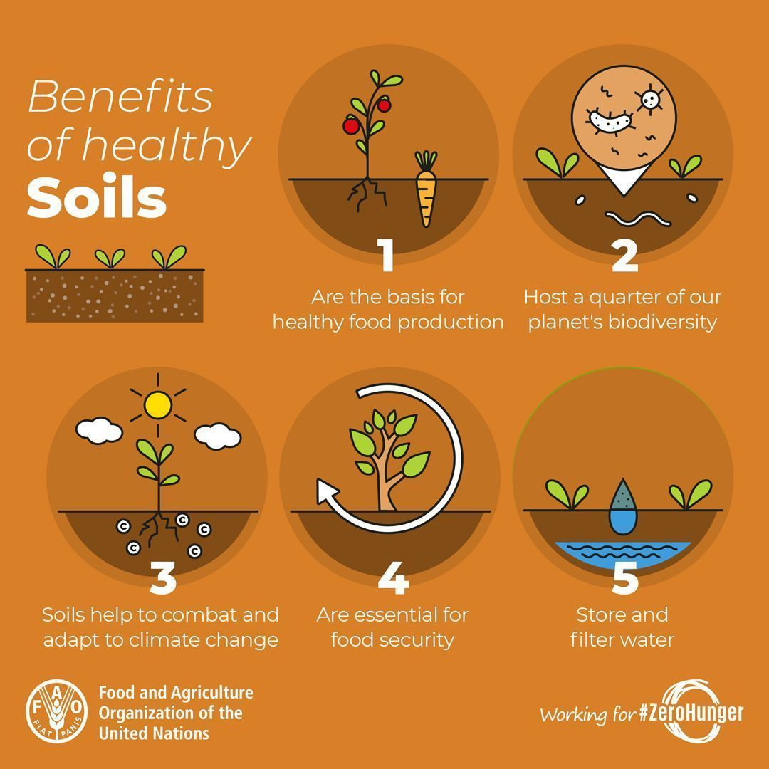 The ground beneath our feet is more precious than we know. We can't take it for granted!   #soils #SDGs<br>http://pic.twitter.com/C6UDzpmEgo