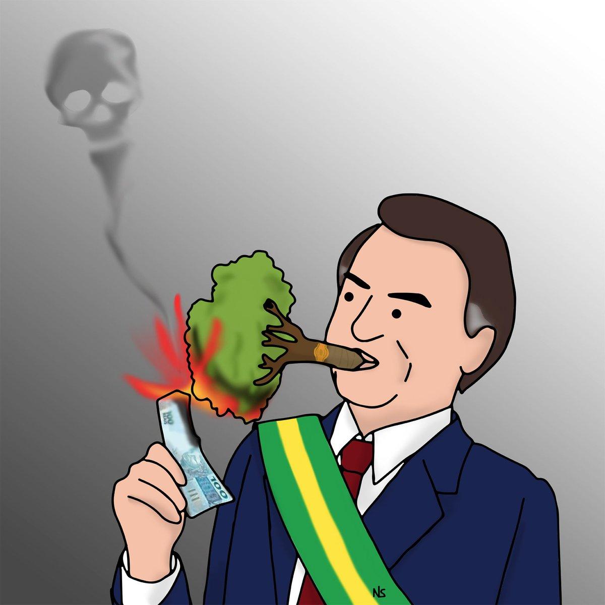 Ordem e progresso#amazzonia #prayforamazonia #forestaamazzonica #brazil #bolsonaro #fire #burningforest #climatechange #rainforest #sosamazonia #enneesse #vignette #satira