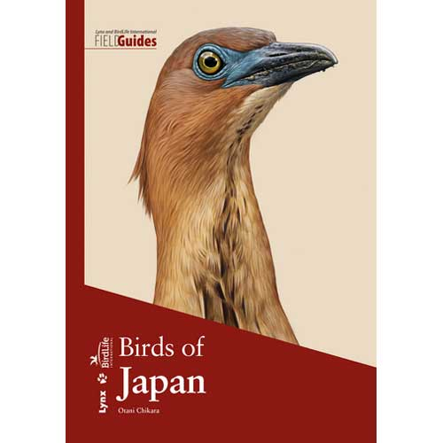 New Field Guide to the Birds of Japan in stock now! Comprehensive but compact, with illustrations by some of the world's best bird artists. Get your copy at https://t.co/LwMb2QqDXc and start dreaming of Steller's Sea Eagles and Green Pheasants! https://t.co/tQvIcvRbT9
