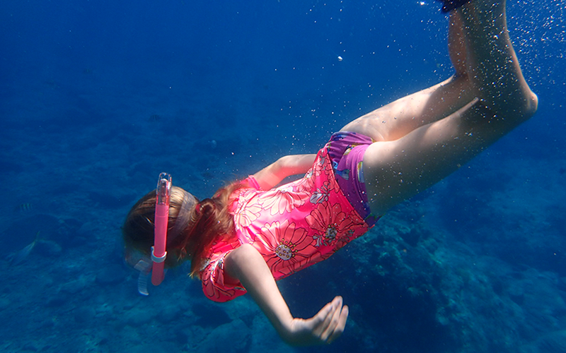 Sun creams are causing the rate of bleaching of corals and rise of the blue green algae due to the chemicals in them! But there is hope - reef safe sun protection and we've looked at the options in the UK.  https://t.co/0v7v52UrR3 #ecofriendly #reefsafe #familytravel https://t.co/GLIA13MHCw