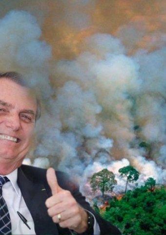 Open Democracy accede a documentos de Bolsonaro en los que planea acabar con el #Amazonas #NoEsFuegoEsCapitalismo elsaltodiario.com/brasil/filtran…