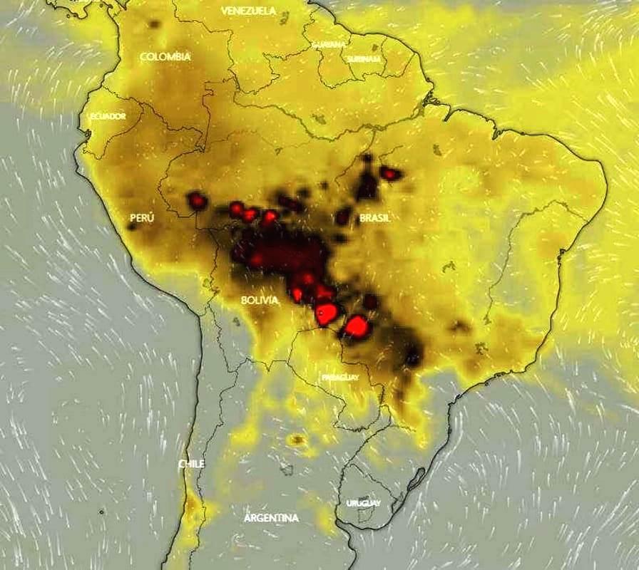 #Amazzonia