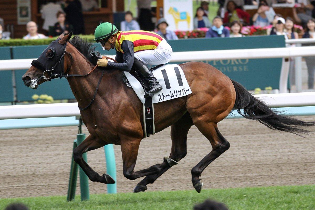 ストームリッパーで勝利し、 川田将雅騎手年間100勝。 WASJに弾みがつくメモリアル。 若干の照れ笑いもご愛嬌。 おめでとうございます。  #ストームリッパー #川田将雅