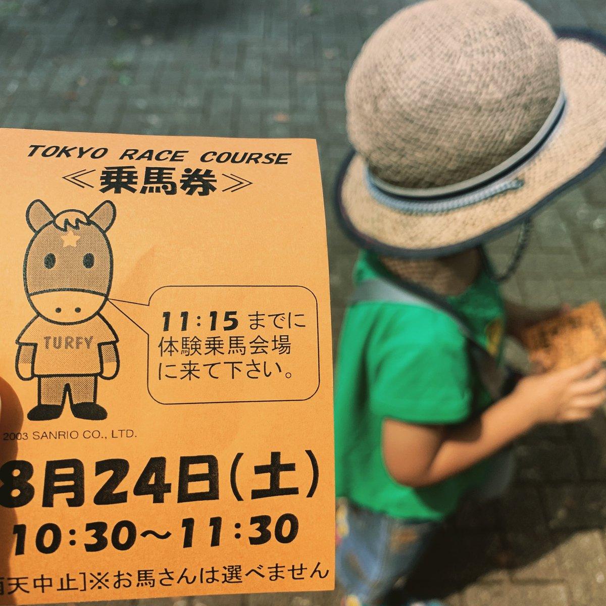念願の✨  #馬  #乗馬  #競馬  #東京競馬場  #府中競馬場  #府中  #乗馬体験  #日吉ヶ丘公園  #家族でお出かけ  #4歳児