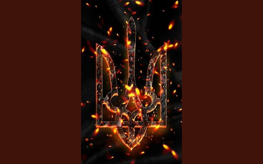 Найманці РФ тричі порушили режим тиші на Донбасі, втрат немає, - штаб ООС - Цензор.НЕТ 4460