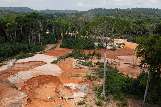 #AmazonRainforest help save it by stopping ilegal mining in Venezuela promoted by the #maduroregime <br>http://pic.twitter.com/wpz3nznt95