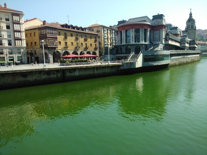 Vamos, que para protestar contra lo que pasa en Francia, algunxs se dedican a manchar el emblema de #Bilbao